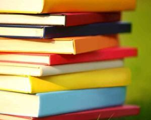 Un scriitor, doi scriitori, de Alex. Stefanescu, cartea vedeta la Bookfest 2014