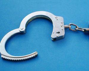 Mircea Basescu, cerere de revocare a masurii de arestare preventiva