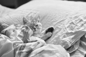 Cum sa scapi de stres inainte de a merge la culcare