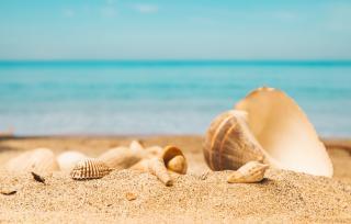 Este interzisa plaja in Mamaia Nord, cel putin pana la 1 iulie