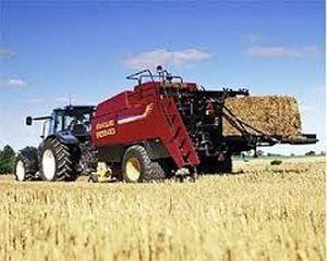 The Guardian: Ce fel de dificultati au taranii romani din cauza liberalizarii pietei agricole