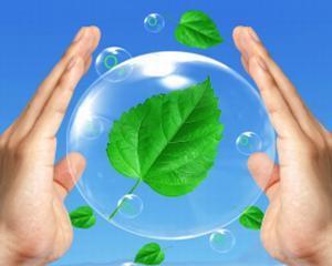 Dezvoltarea inteligentei ecologice a tinerilor, posibila printr-un parteneriat romano-norvegian