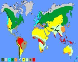 Anul 2013, unul dintre cei mai caldurosi ai ultimilor 150 de ani