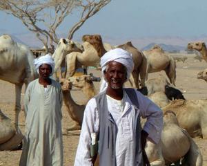 Cati oameni sufera de foame in intreaga lume: Peste 840 milioane