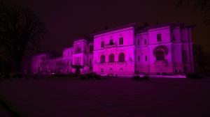 Administratia Prezidentiala si Guvernul au marcat Ziua Internationala a Luptei impotriva Epilepsiei