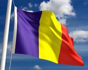 Noua Constitutie: Cum va arata drapelul tricolor