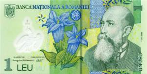 LEUL NU MAI E REGELE JUNGLEI. Moneda nationala a ingenuncheat in fata EURO