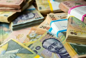 Euro atinge maximul ultimelor zece sedinte, in timp ce Robor la trei luni scade