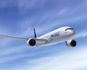 Cursa aeriana Sibiu-Munchen a fost amanata dupa ce avionul a lovit un stol de pasari