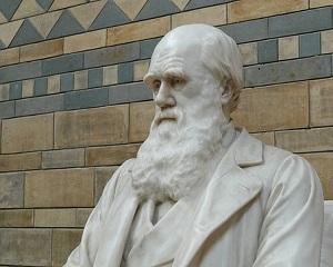 Veleitatile sociologice de calitate ale lui Mugur Isarescu
