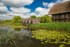 USR: Delta Dunarii, in pericol din cauza baronilor locali PSD