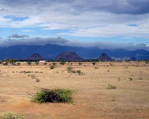 Proprietarii terenurilor afectate de calamitati, scutiti de la plata impozitului pe venitul agricol