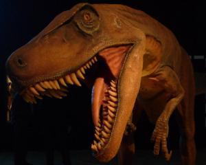 Dinozaurii Giganti din Argentina ajung la Bucuresti