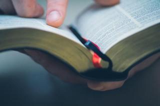 DOOM 3. Dictionarul limbii romane se imbogateste cu 3.500 de cuvinte, precum: izoleta, all-inclusive sau take away
