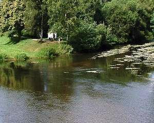 Pescuitul in Delta Dunarii se va putea face cu maximum trei undite