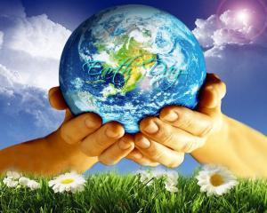 Schneider Electric, printre cele mai avansate companii la dezvoltarea sustenabila