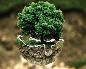 Schema de ajutor de minimis pentru Programul Pilot Start-Up Mediu Eco-Business