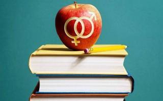 Ministrul Educatiei: Este nevoie de educatie sexuala in scoli. In Romania, nasc anual aproximativ 20.000 de mame minore