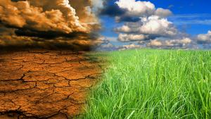 Avertisment: Cantitatea de Carbon din atmosfera va atinge un nivel catastrofal