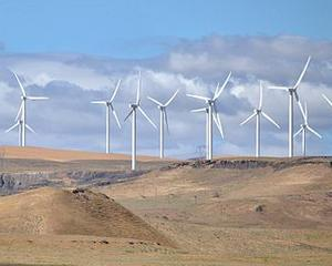 Estimare: Energia regenerabila, plus 60% in 2014