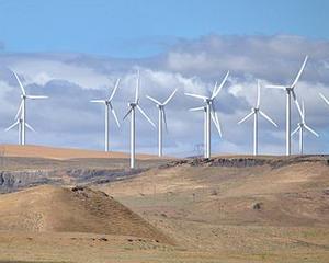 Estimare: Energia regenerabila, plus 60% in 2014