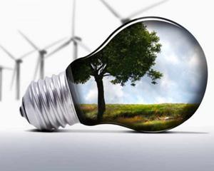 Scad investitiile mondiale in energiile verzi