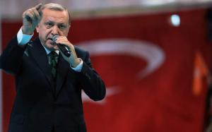 Realegerea lui Erdogan. Cum a fost posibila?