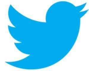 Facebook si Google, lasate in urma de Twitter in domeniul publicitatii