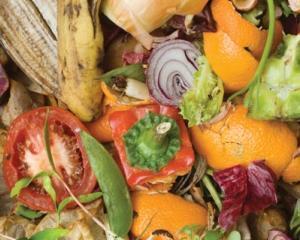 FAO: Cate alimente arunca la cos Romania