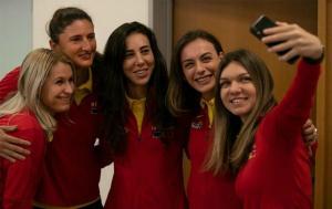 Romania invinge Cehia cu 3-2 si se califica in semifinalele Fed Cup pentru a doua oara in istorie