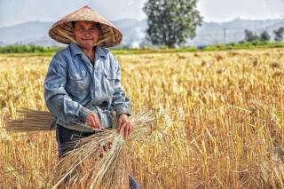 Un gigant al industriei alimentare va investi 1,2 miliarde de franci elvetieni pentru sprijinirea tranzitiei catre un sistem alimentar regenerativ