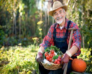Acces mai usor la credite pentru fermieri