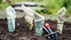 Bucurestiul va avea propriul program de finantare a start-up-urilor