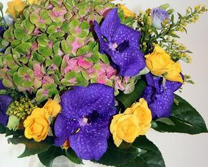 Piata florilor din Romania: Valoreaza 100 milioane euro, dar jumatate este la negru
