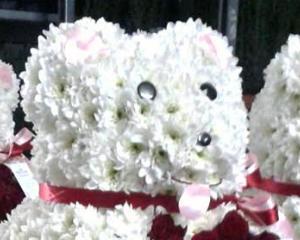 De Craciun, FlorideLux livreaza ursi din flori