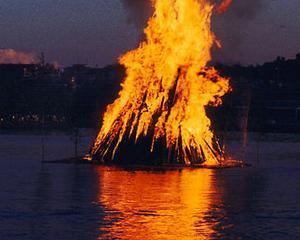 Seful ANRE: Acasa am incalzire pe lemne si pe gaze. Platesc 2.000 lei tot anul