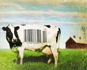Food Watch: supa de vita cu 0% carne de vita gasita in rafturile magazinelor alimentare din Franta