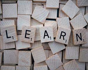 Ghidul managerului. Legea va obliga sa organizati periodic cursuri de formare profesionala in firma dvs.!