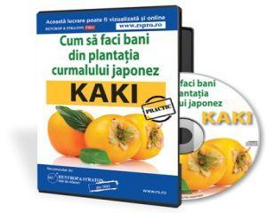Cum sa faci bani dintr-o livada de Kaki, faimosul curmal japonez?