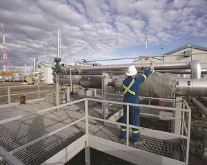 Gazprom asigura Europa ca debitele de gaz au ramas constante
