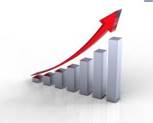SAS Grup in 2013: Cifra de afaceri si profit in crestere