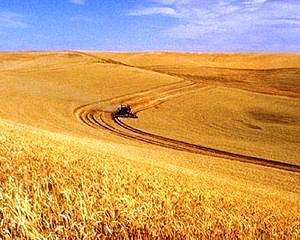 Programele europene pentru agricultura, 10 miliarde euro pentru economia romaneasca