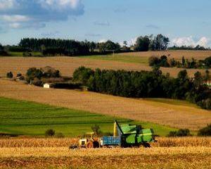 Agricultura ecologica: Ajutoarele de minimis se platesc din 2 decembrie