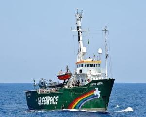 Scandal financiar la Greenpeace: Un angajat a pierdut 3,8 milioane euro