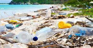 Cine lasa gunoi pe plaja va fi amendat. Politia, sesizata pe Whatsapp