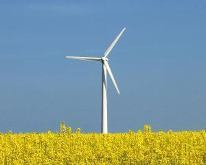 Guvernul, reclamat la Comisia Europeana pentru ca a amanat certificatele verzi