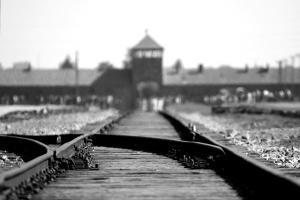 Holocaustul este doar unul dintre episoadele sinistre ale istoriei contemporane