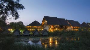 Doi antreprenori romani reinventeaza pachetele turistice din Delta Dunarii