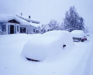 Un vortex polar aduce in Canada si in nordul SUA temperaturi de pana la minus 51 de grade Celsius