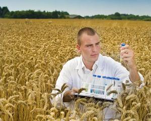 7 afaceri agricole de inceput in 2014